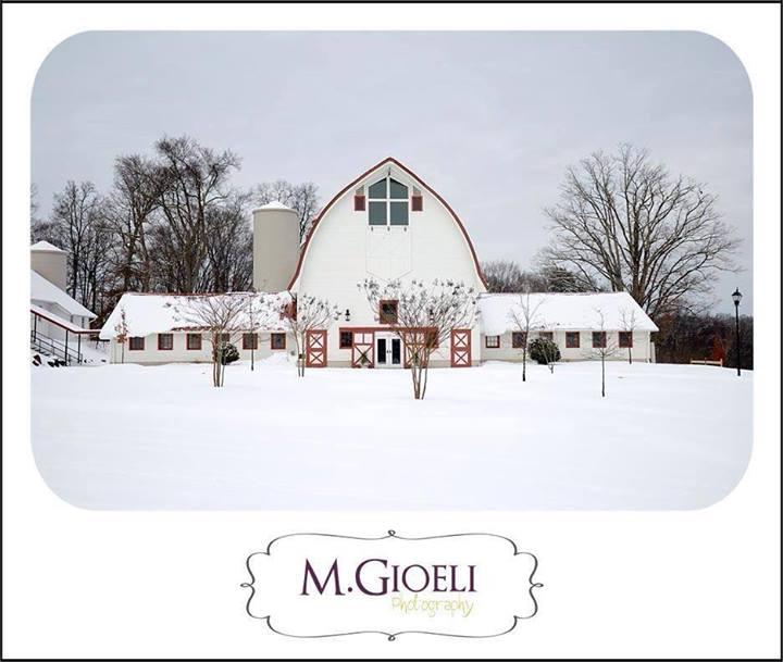M. Gioeli Photograhy - Snow Photo Winner